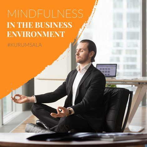 Mindfulness in the Business Environment (Theory & Practice)